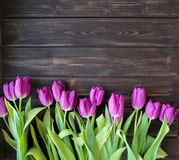 Many purple tulips on wooden table. A lot of beautiful purple tulips on the dark wooden table Royalty Free Stock Images