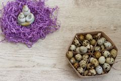 Many quail eggs lie in a beige basket. And next to them are toy birds, decorated with a purple nest Royalty Free Stock Photography