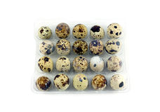 Many quail eggs in plastic package closeup Royalty Free Stock Images
