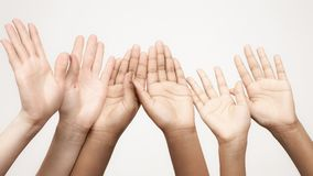 Many raised hands in a row. Body language in relationships of friends and companies royalty free stock photos