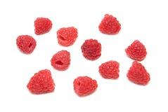 Many raspberries Royalty Free Stock Photography