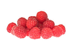 Many raspberries over white close up. Studio shot Stock Images