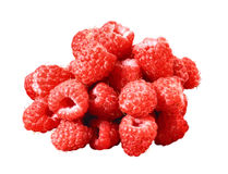 Many raspberry isolated Stock Photography