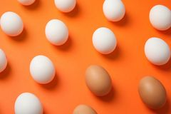 Many raw chicken eggs. On color background stock photos