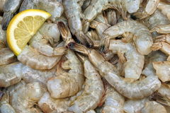 Many Raw Green King Size Shrimps With Lemon Slices Royalty Free Stock Photos