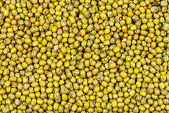 Many raw green mung beans Royalty Free Stock Images