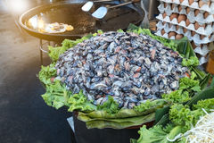 Many raw mussel prepare for cook is mussel pancake. S or Oyster omelette Hoi Tod in local street food market Thailand Stock Images