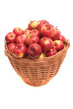 Many red apples. Lay in a basket on a white background Stock Photography