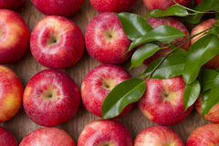 Many red apples with leaves on a wooden background. Royalty Free Stock Photo