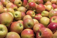 Many red apples in mall on sale closeup shot natural color image. Healthy and natural foods with high fiber content. royalty free stock photos