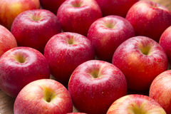 Many red apples on a wooden background. Royalty Free Stock Image