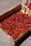 Many red chili in paper box Royalty Free Stock Photos