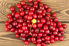 Many red and one green cherries on wooden background. Many red and one green fresh cherries on wooden background stock photography