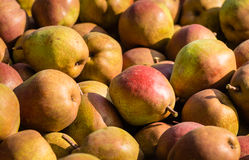 Many red pears from close Royalty Free Stock Photography