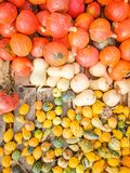 Many red pumpkins or winter squash on farmers market. For sale, cooking or Thanksgiving royalty free stock images