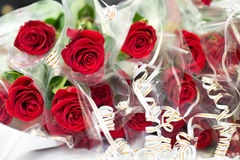 Many red roses Royalty Free Stock Images