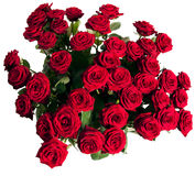 Many red roses. On black background Stock Photography