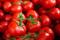 Many red tomatoes on the market. royalty free stock photos