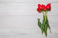 Many red tulips on a light wooden background. Spring flowers Stock Images