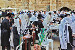 Many religious Jews in tallit Stock Image