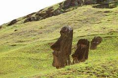 Many remains of huge Moai on the slope of Rano Raraku volcano, Rapa Nui national park, Archaeological site on Easter Island stock photography