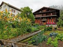 Urban garden in the resort mountain town of Elm Switzerland