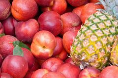 Many ripe nectarines, and pineapple Royalty Free Stock Photo