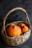 Many ripe orange pumpkins in a basket with leaves. Autumn Harvest. Thanksgiving Background. royalty free stock images