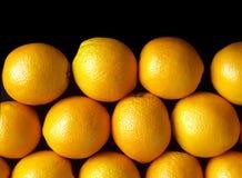 Many ripe oranges isolated on black Stock Photography