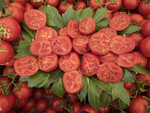 Many Ripe Red Tomatoes Royalty Free Stock Image
