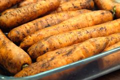 Many ripe red wet carrots in a pile side view closeup. Many wet ripe red carrots in a pile side view extreme close up Royalty Free Stock Images
