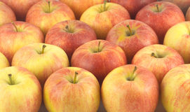 Many ripe tasty apples close up Royalty Free Stock Photography