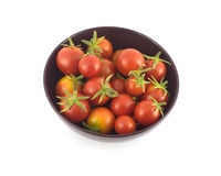 Many ripe tomatoes in purple bowl closeup isolated Stock Photography