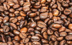 Many roasted coffee beans. Background Stock Image