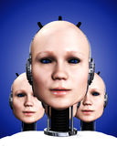 Many Robo Women 5. An image of a few heads of technologically cloned robotic women who have been duplicated, it would make a interesting background Stock Photo