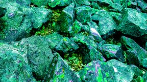 Green and purple mossy rocks stock images