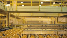 Many rollers rolled products. Modern high-tech conveyor shifting production stock footage