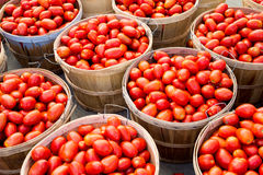Many Roma tomatoes in baskets Stock Image
