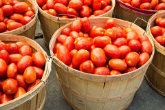 Many Roma tomatoes in baskets Royalty Free Stock Photo