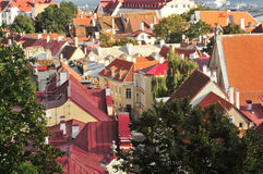 Many rooftop in Tallinn Royalty Free Stock Photo