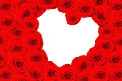 Many roses, inside the heart Stock Photos