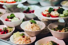 Many round plates with tasty vegetables dish of salads in restaurant. View of many round plates with tasty vegetables dish of salads with tomato, onion royalty free stock images