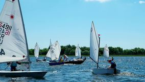 Many sailing boats, cruising in front of the audience, youth sailing regatta, sailboats competing on the river stock footage