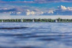 Many sailing ships Stock Photography