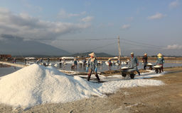 Many salt workers working at the factory Stock Photography