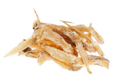 Many salted goby fishes Stock Images