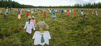 Many scarecrows in the field. Panorama of scarecrow Royalty Free Stock Photos