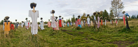 Many scarecrows in the field. Panorama of scarecrow Royalty Free Stock Photo