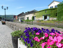 Many seagulls at the Otaru canal decorated with blooming flowerbed, Otaru Town of Hokkaido. Japan Stock Image