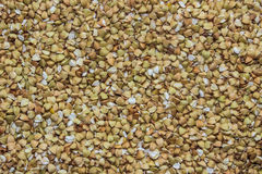 Many seeds of green buckwheat (may be used as background) Royalty Free Stock Photo